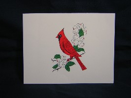 1501B Red Bird Notes & Envelopes