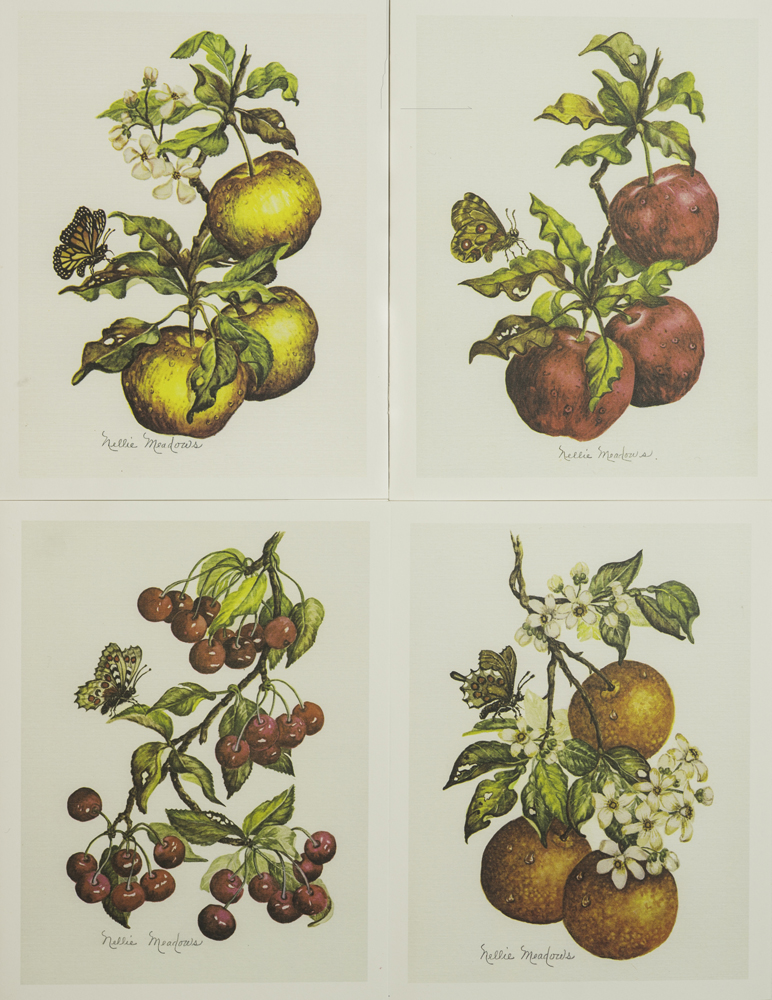 1511 Assorted Fruit Notes & Envelopes